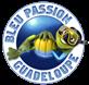 Photo : BLEU PASSION GUADELOUPE