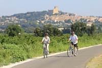 A vélo dans les vignobles de Châteauneuf du Pape