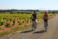 "Cycling breaks on the ""De la Pierre aux Galets"" route between Orange and Châteauneuf du Pape"