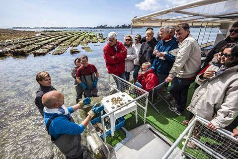 La Cabane à huîtres de Toulvern