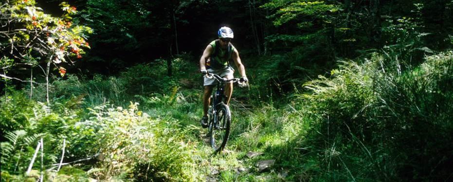 Vélo et bien-être en Argonne