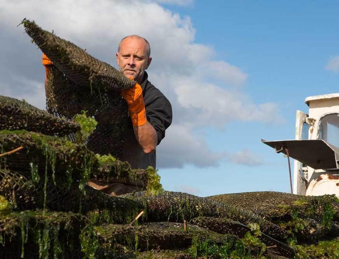 La cabane à huîtres-Baden-Golfe-du-Morbihan-Bretagne sud
