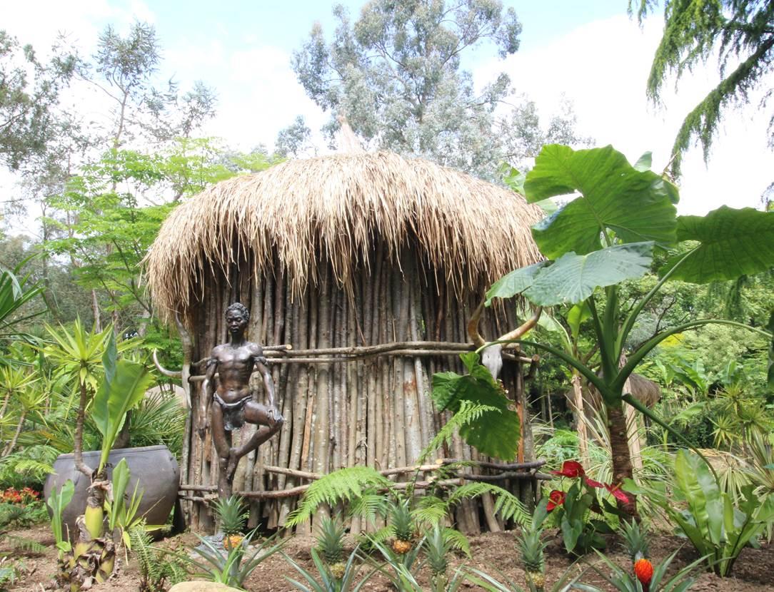 case afrique tropical parc 2015 003