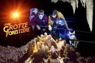 Aven Grotte Forestière