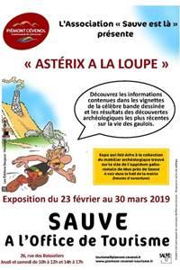 """Exposition """"Astérix à la loupe"""""""