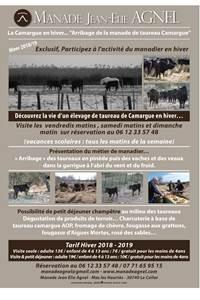 La Camargue en Hiver : Manade Agnel