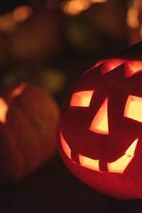 Halloween au Fort Saint-André