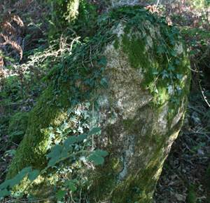 Menhir La Loge au Loup