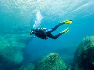 Test snorkeling! - Cip Collioure - Diving