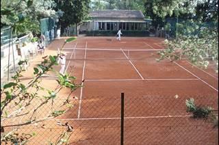 TENNIS CLUB D'AVIGNON