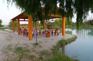 Etang de pêche à Meynes