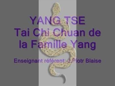 Paris Tai Chi Chuan Paris, Snake style, Boxe du Serpent, école Yang Tse.
