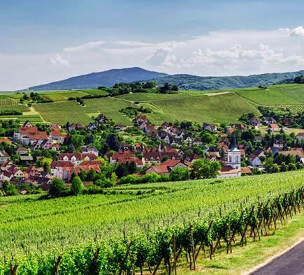 Mobilboard Obernai - Cœur d'Alsace
