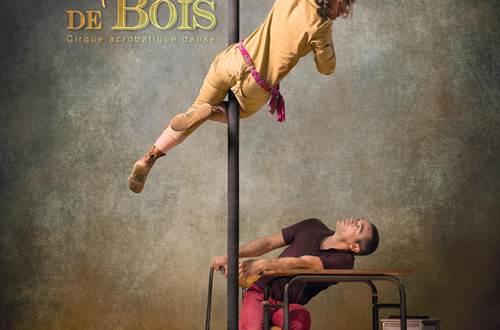 Cirque Acrobatique Danse - Corps de Bois ©