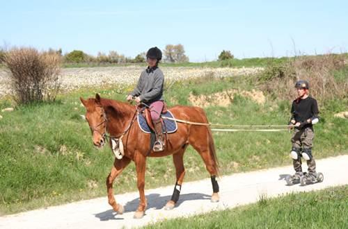 frany equitation ©