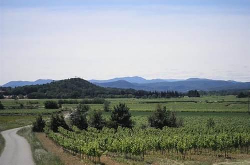 Domaine des Arnasseaux vins des Cévennes ©