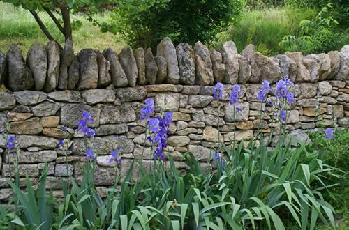 Au pays des pierres- Escapades Nature Gard ©