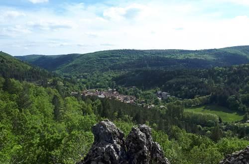Vue d'Alzon depuis Notre-Dame ©