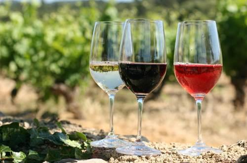 choix de vins du cru Hotel Gardoon à Collias ©