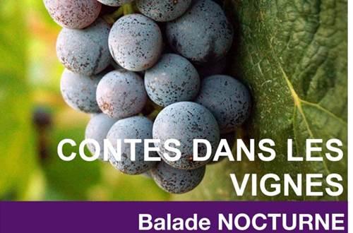 Contes dans les Vignes  ©