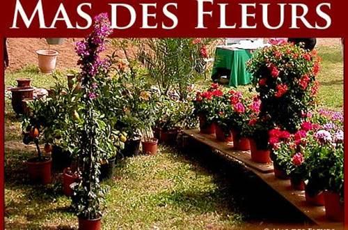 Mas des Fleurs Aigaliers ©