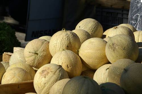 melons ©