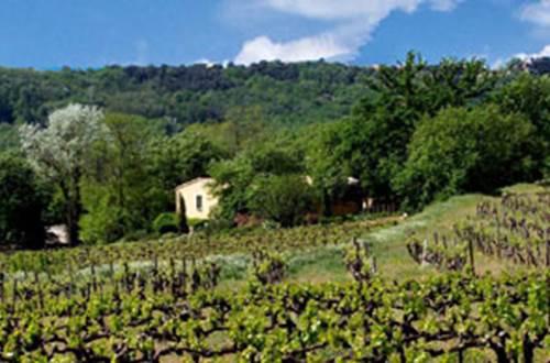MAISON PONS au coeur des vignes © PONS Mathieu