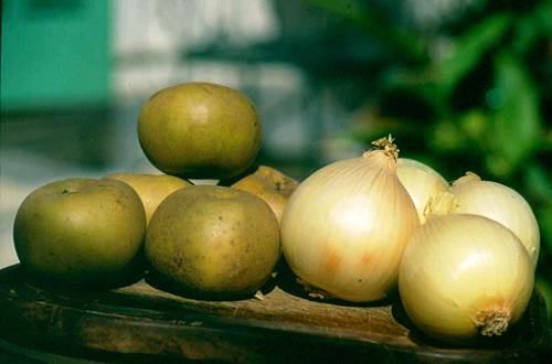 oignons et pommes ©