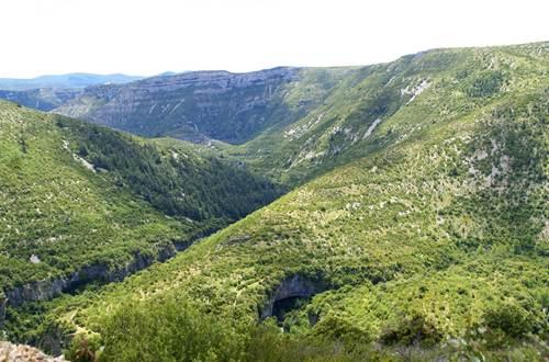 panorama sur les Cévennes- Escapades Nature Gard ©