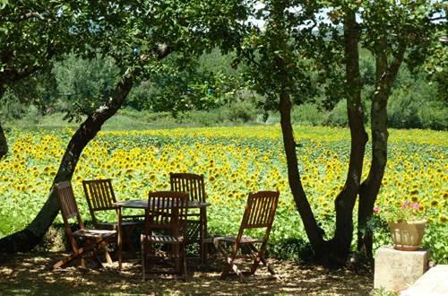 Meublé la bergerie d'arrèze à Serviers © Lombard Sophie