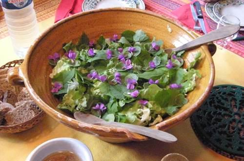 asinerie-badjane-salade-aux-fleurs ©