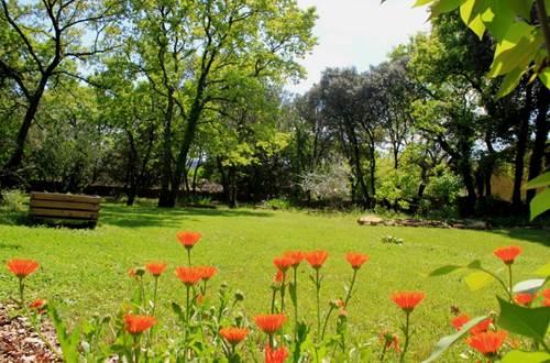 Obofix IV jardin fleuri © Yvan GREER