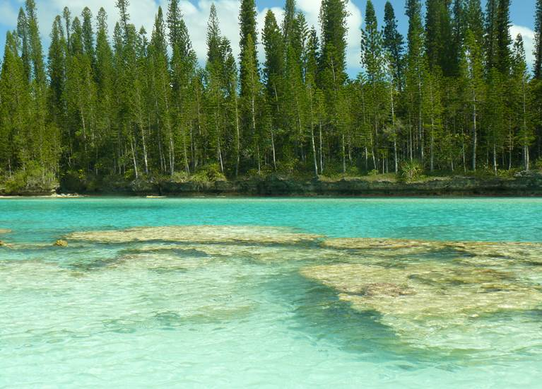 Eau cristalline piscine naturelle