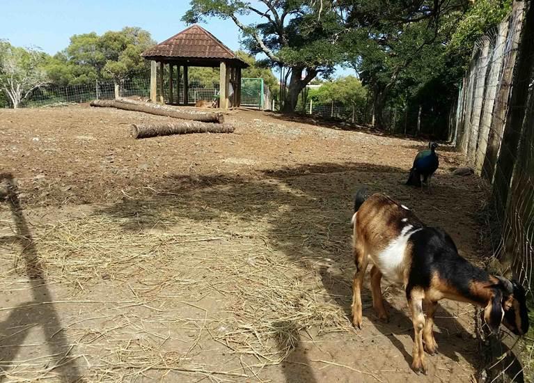 Parc Forestier