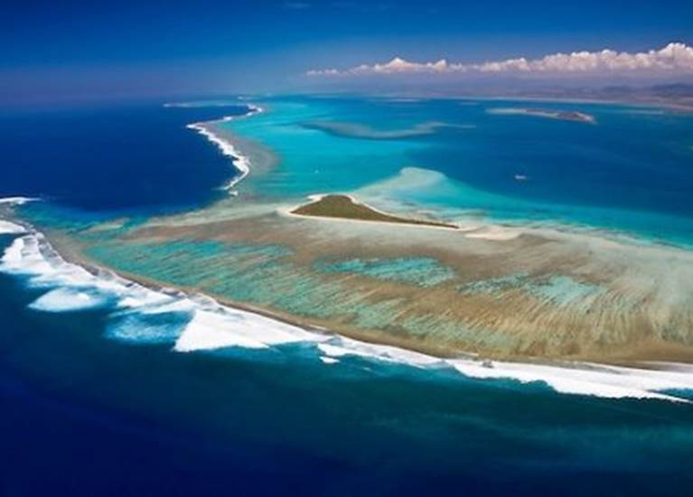 Journée îlot Ténia