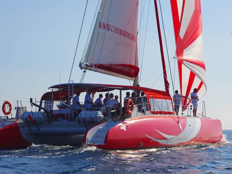 Sorties en mer en Catamaran