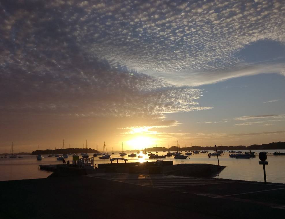 Mickaël-Rio-Guide-de-Pêche-Sarzeau-Presqu'île-de-Rhuys-Golfe-du-Morbihan-Bretagne sud
