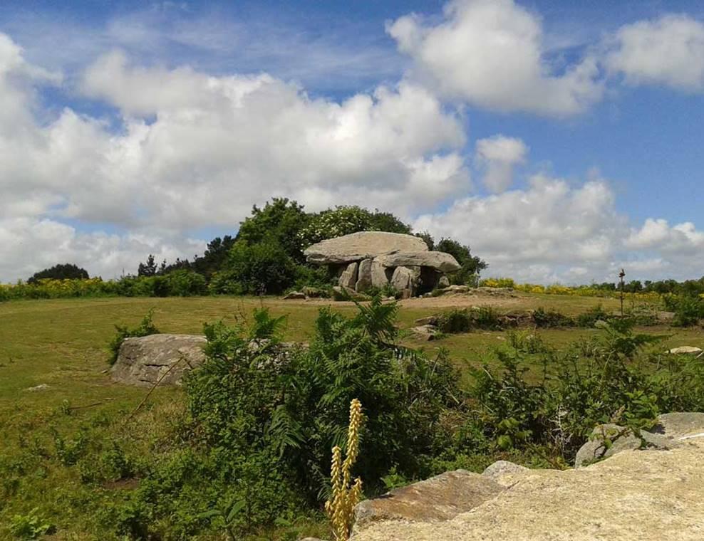 Visitez l'île aux Moines en mini bus-Ile-aux-Moines-Golfe-du-Morbihan-Bretagne sud