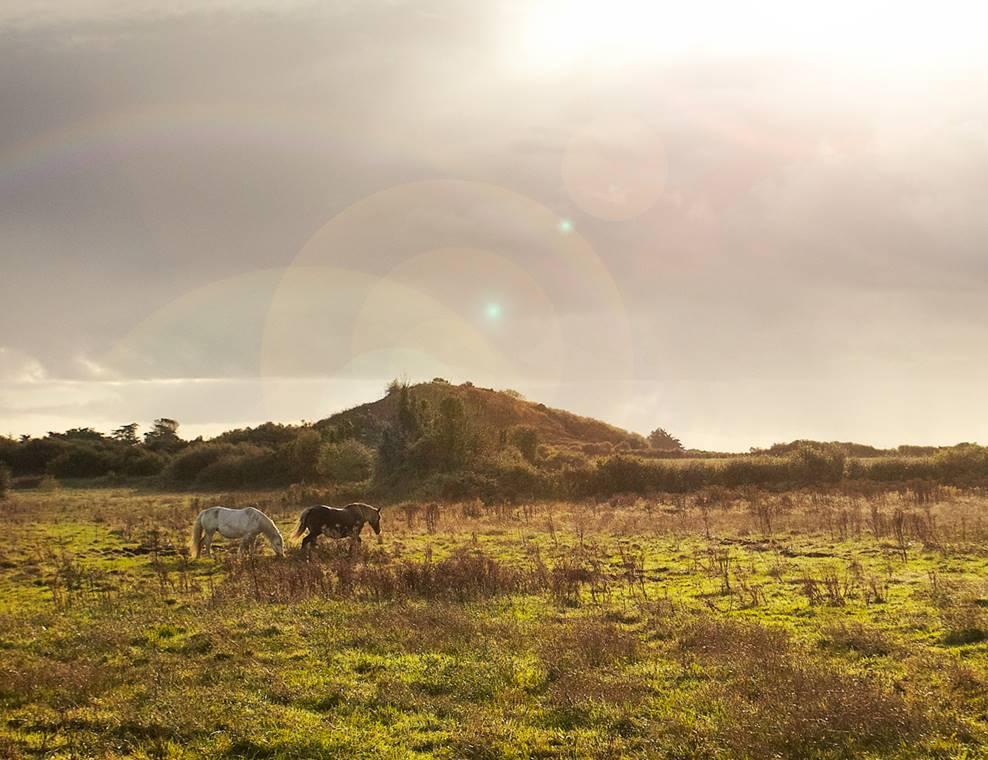La Butte de César - Arzon - Presqu'île de Rhuys - Golfe du Morbihan