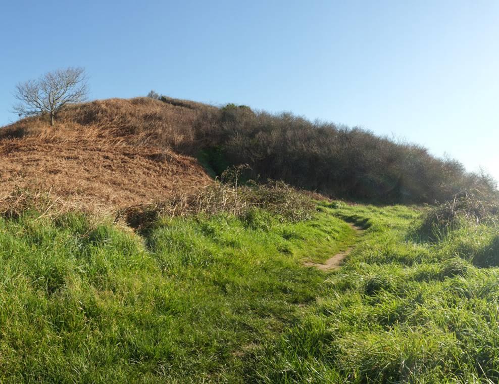 Tumulus de Tumiac ou Butte de César Arzon (1) - Morbihan Bretagne Sud